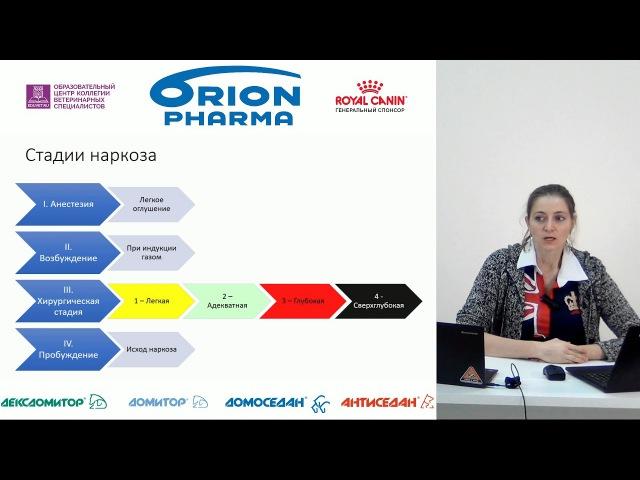 Мальцева А. Н. - Этапы анестезии и препараты для анестезии (Лекция 2)