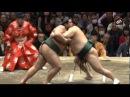 Январский турнир по Сумо 2016, 7-9 дни Хатсу Басё Токио / Hatsu Basho Tokyo