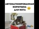 Автоматизированая кормушка для кота