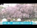 横浜で30年ぶり、3月下旬以降に1センチの積雪も(18/03/21)