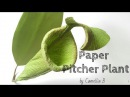 DIY How to make paper Pitcher plant from crepe paper Easy and realistic paper flower