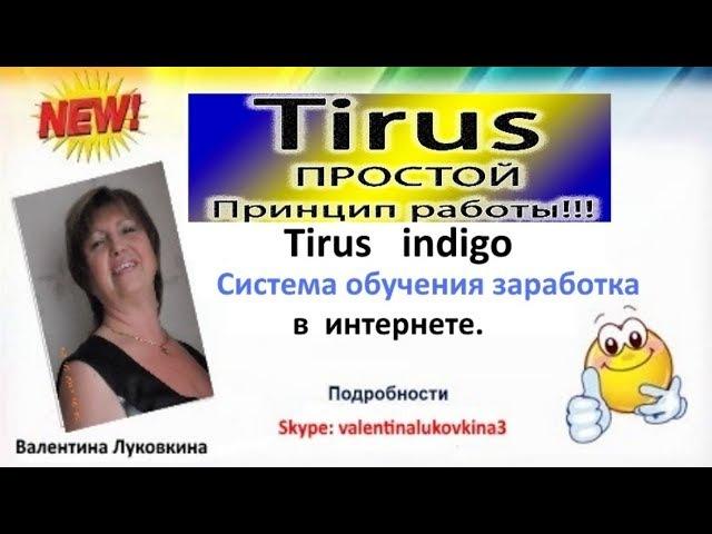 Tirus Indigo Тайрус Индиго Система обучения заработка в Интернете. » Freewka.com - Смотреть онлайн в хорощем качестве