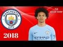 Leroy Sane 2018 ● Fantastic Skills, Assists Goals ● HD