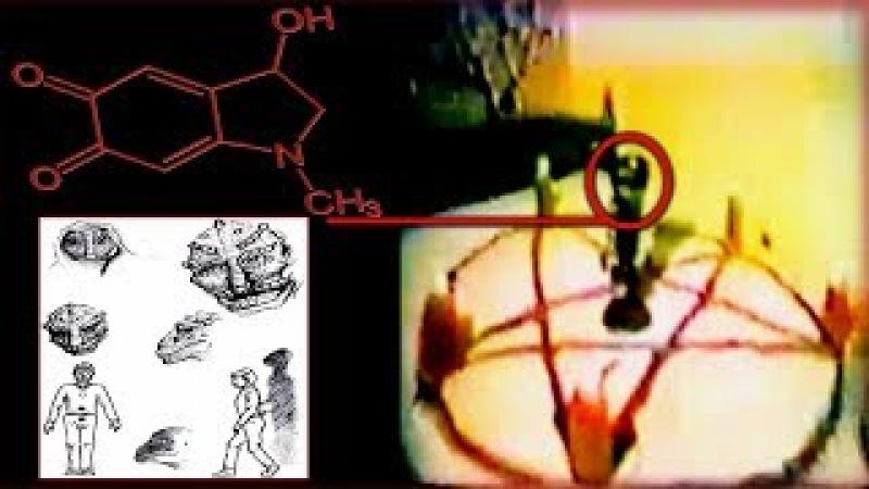 RabbitHoleGate | The Alien Agenda 2029 - Adrenochrome Harvesting. (HIGH LEVEL WHISTLEBLOWERS)