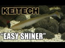 Keitech Easy Shiner Lure action on a Texas Rig Underwater Full HD