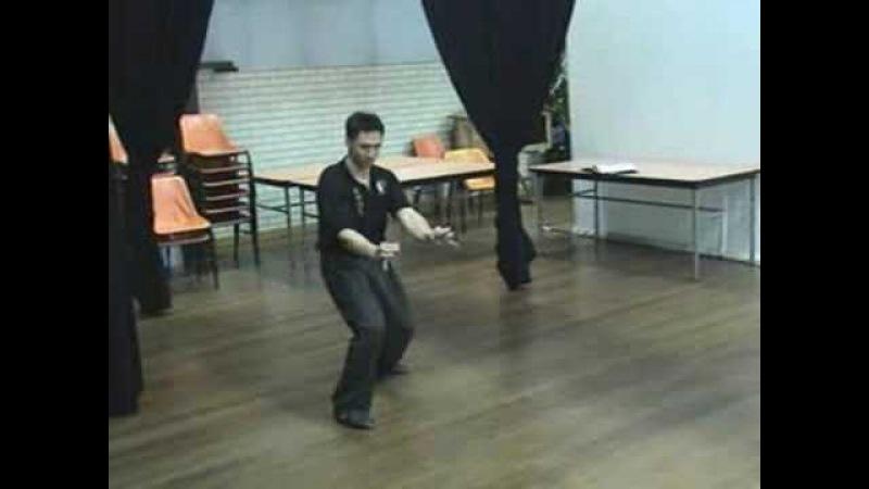 Southern Praying Mantis Kung Fu (Chow Gar) Um Gen Sau Form