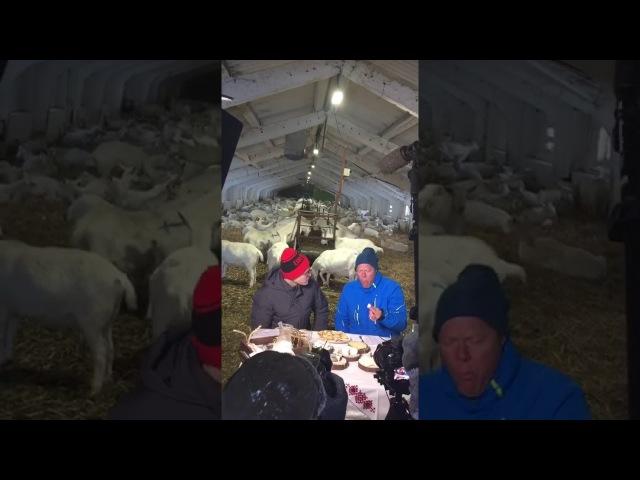 Съемки шоу Поедем поедим на Сернурском сырзаводе бекстейдж Ч2