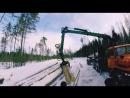 Вывозка леса
