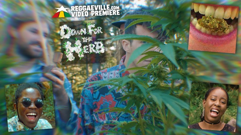 Dub Kartel feat. Blvk H3ro Jah'mila - Down For The Herb [Official Video 2018]