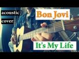 Bon Jovi - Its My Life (acoustic cover by Sergey Poluhin)