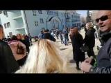Прямая трансляция с митинга против полигона ТБО