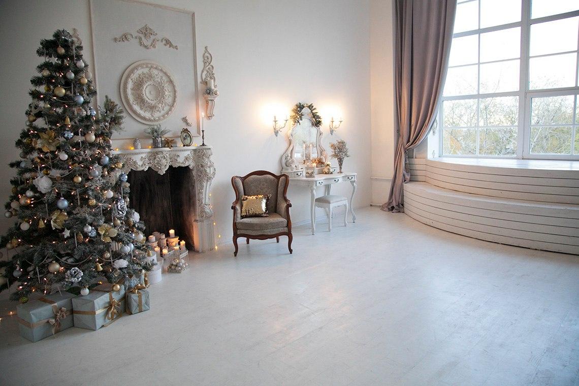 залы для фотосессий спб новый год замороженных
