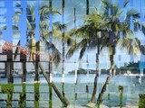 Neal Schon - Caribbean Blue