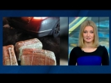 Кокаиновое дело: у ФСБ есть подозреваемые, и это не дипломаты