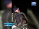 Браконьеров поймали в тайге Качугского района, «Вести-Иркутск»
