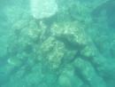 рыбки маленькие ,Греция , Крит.много