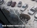 Александр Пугачев фото #50