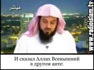 Обращение к шиитам шейх Мухаммад Арифи