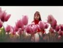 День Победы! Новая песня о Великой Победе в ВОВ поет девочка 6 лет