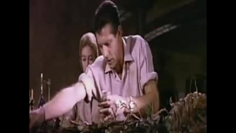 День Триффидов / The Day of the Triffids (Стив Секели / Steve Sekely) [1962]