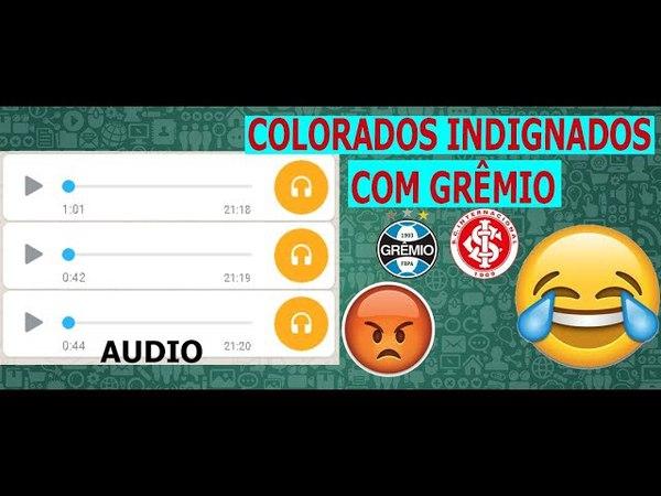 Audio Colorados indignados com o Grêmio no Whtasapp