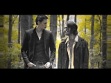 Roman & Peter ( Hemlock Grove Хемлок Гроув) ( Lady GaGa - Milion Reasons )