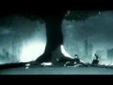 Eisblume - Eisblumen