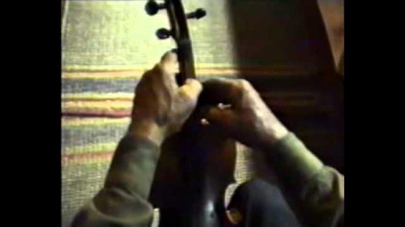 Інструментальна автентика. Українська скрипка