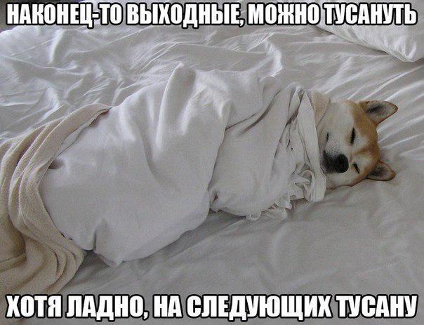 Артур Харламов | Москва