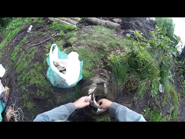 Ветрено. Немного рыбки и анонс (мини-отчет) июль ловля леща