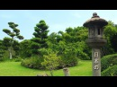 Relaxing Japanese Music with Traditional Bamboo Flute, Koto, Shamisen- Zen Garden Music Video