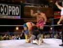 WWF Monday Night Raw (31.05.1993)