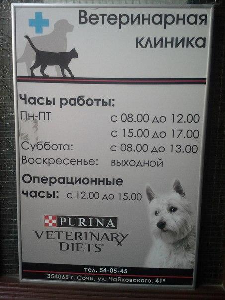 Управление ветеринарии города Сочи