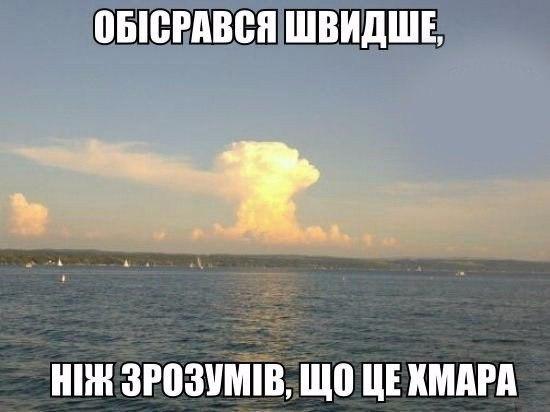 Online last seen 35 minutes ago max solonenko
