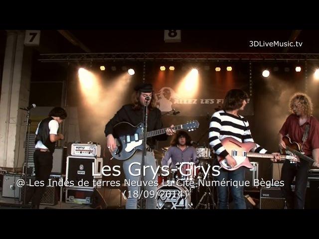 Les Grys-Grys @ Les Indés de terres Neuves La Cité Numérique Bègles (18/09/2014) v.2D-HD