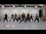 'Don't Stop The Party' Pitbull choreography by Jasmine Meakin (Mega Jam)