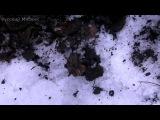 Взрыв 30 самых мощных петард в России  Очень опасно  18