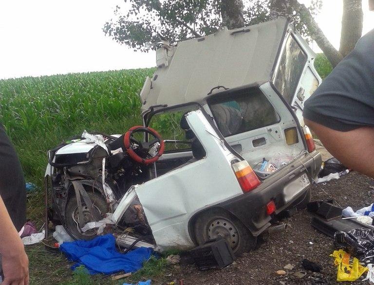 ДТП на трассе «Ростов-Таганрог»: 76-летний водитель на «Оке» слетел в кювет и врезался в дерево