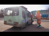 Сосиска не успела на автобус