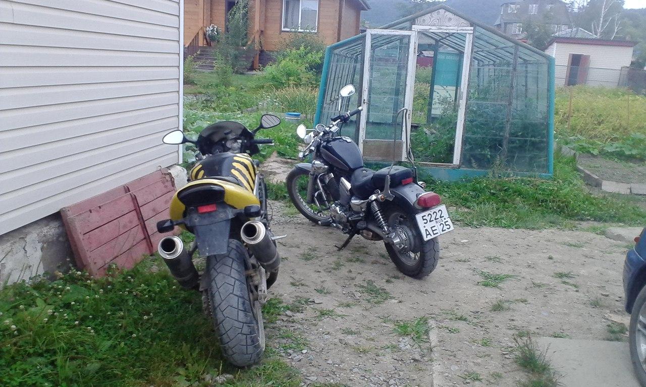 Купить Honda (Хонда) в Курске Фото, цены на