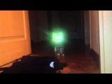 Кот агента Малдера Agent Malders cat X-files