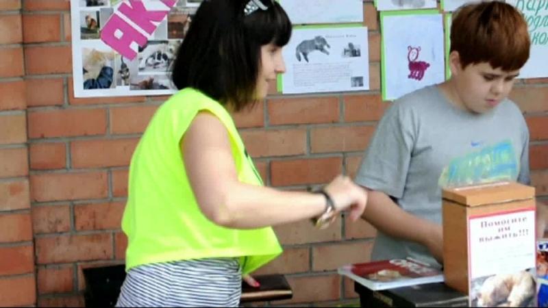 Верный друг. Акция по сбору средств в помощь бездомным животным 18 июля 2015 года.