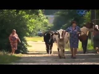 Обалденный фильм про деревню и любовь - Дом для двоих 2015! Смотреть мелодрамы про деревню