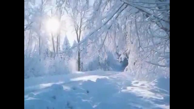 София Ротару-Зима(Какая снежная зима,какая лютая...)(фан-видео)
