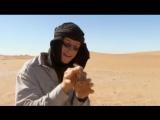 Man.vs.Wild.S02E01.Sahara.
