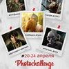 PhotoChallenge - 55 Неделя Мат-Меха