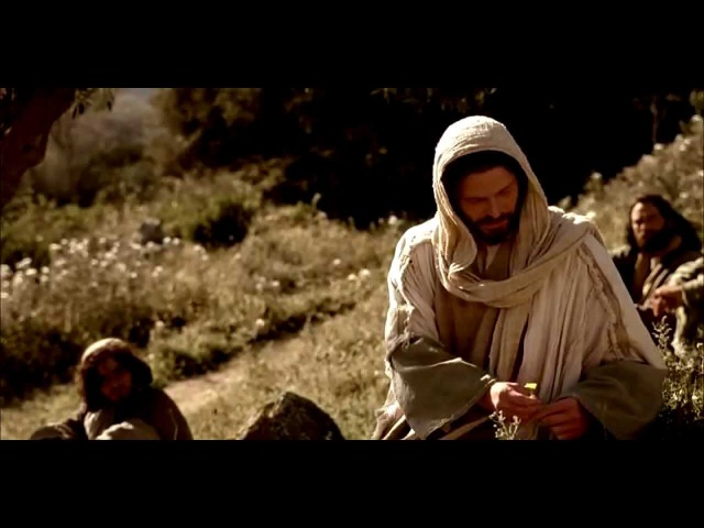 Ищите Царствия Божия. От Луки 12:13-34