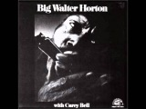 Big Walter Horton - Have A Good Time