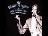 Big Walter Horton Alfred Harris - My life Blues