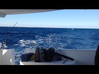 Private fishing April 2015=)